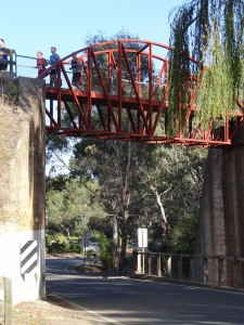 Runners going over the Quarry Road Bridge - Photo courtesy of Ian Trengove